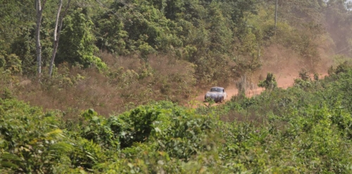 rally-images53
