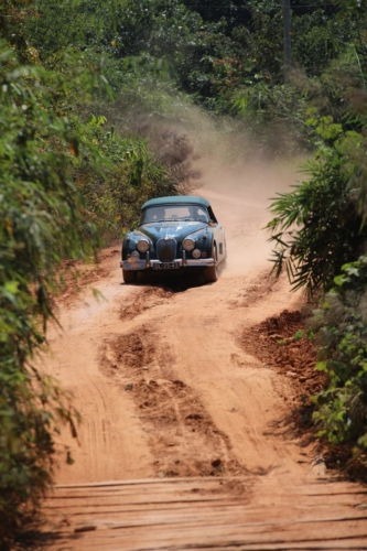 rally-images65