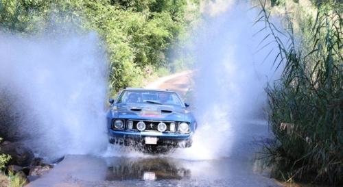 rally-images94