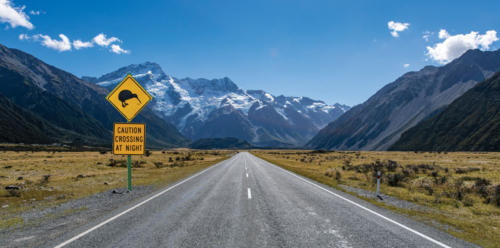 NEW-ZEALAND-IMAGES-7