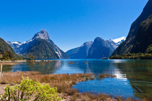 NEW-ZEALAND-IMAGES-9